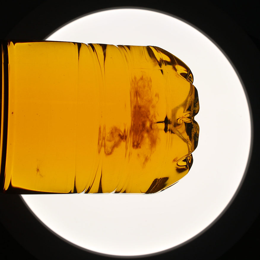 Contamination of apple juice